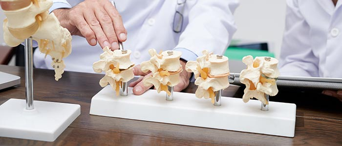 Spinal Disc Injury Education